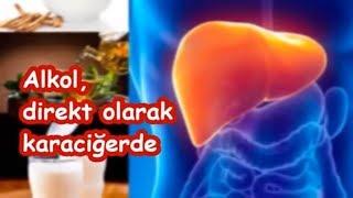 Alkol, direkt olarak karaciğerde