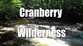 Backpacking the Cranberry Wilderness, WV