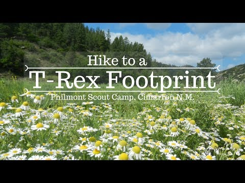 Hike to a T-Rex Footprint