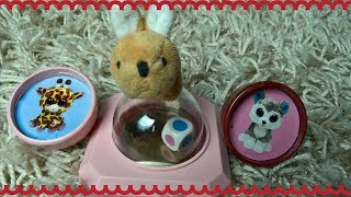 Funny Bunny Playing With Toys, Toddler Video, Kids Video Videos for Children