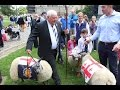 Tony Rowe Sheep Driving in Exeter
