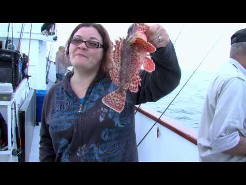 Sea Angler Sculpin Fishing With Dan Hernandez Sport