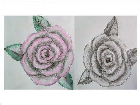 Rosen Bild 3d Blume Natur Leinwand Abstrakte Kunst Bilder
