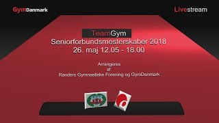 TeamGym 2018 Senior Forbundsmesterskaber