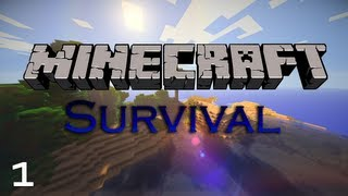 Break, Build, Survive: Episode 1 - Great Start (Minecraft 1.5 Let