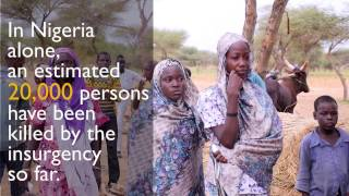 Niger: Displacement and Violent Extremism