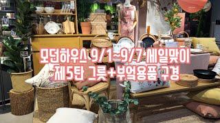 모던하우스 키친세일 (9/1~9/7) 그릇쇼핑 (더보기…