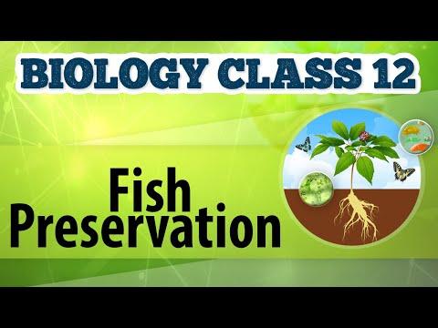 Fish Preservation - Animal Husbandry - Biology Class 12