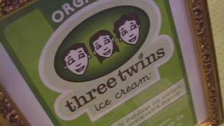Three Twins Organic Ice Cream - Green Values, Integrity And Sustainability