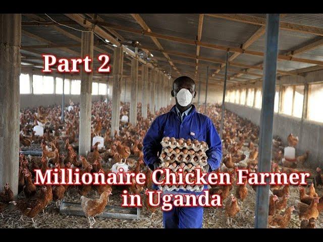 MILLIONAIRE Chicken Farmer in Uganda PART 2