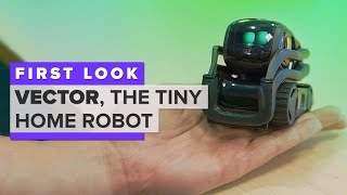 Meet Vector, the tiny home robot