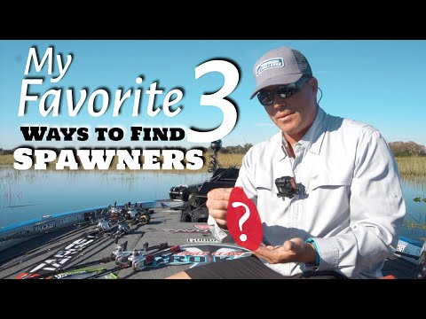Favorite 3 Ways To Find SPAWNING BASS - Fishing Tip Series