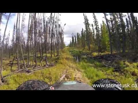 Swamp Buggy - Remote Well Inspection 1