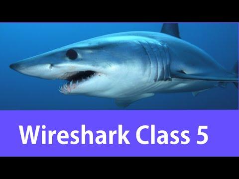 Wireshark Certified Network Analyst Class #5