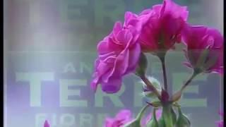 L'Originale ATF Candis (Оригинал Кандис) | Видео урок по нанесению декоративной краски