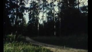 Ангел-хранитель - Мушкетеры двадцать лет спустя