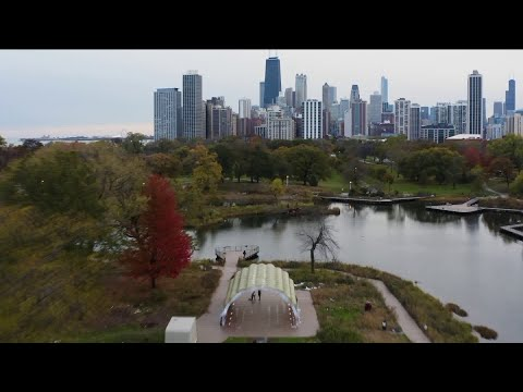 Mick Lee - Chicago Couple's Engagement Accidentally Captured by Drone