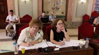 Pleno junio 2017 - Transparencia tranvía