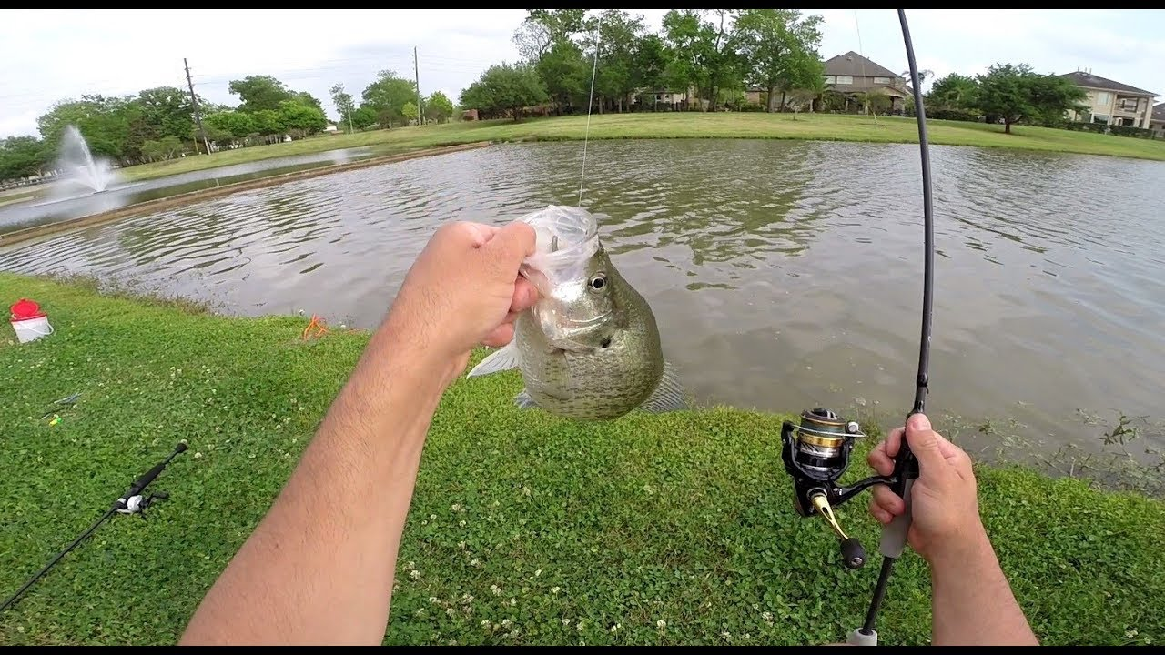 Spring Crappie fishing 2019 Texas