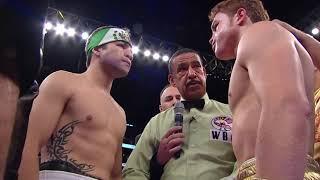 Canelo Alvarez vs Alfonso Gomez Highlights 1/2