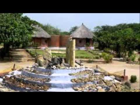 Kutch Fossil Park | Travel 4 All
