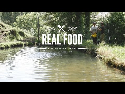 Sustainable Fish Farm In Switzerland