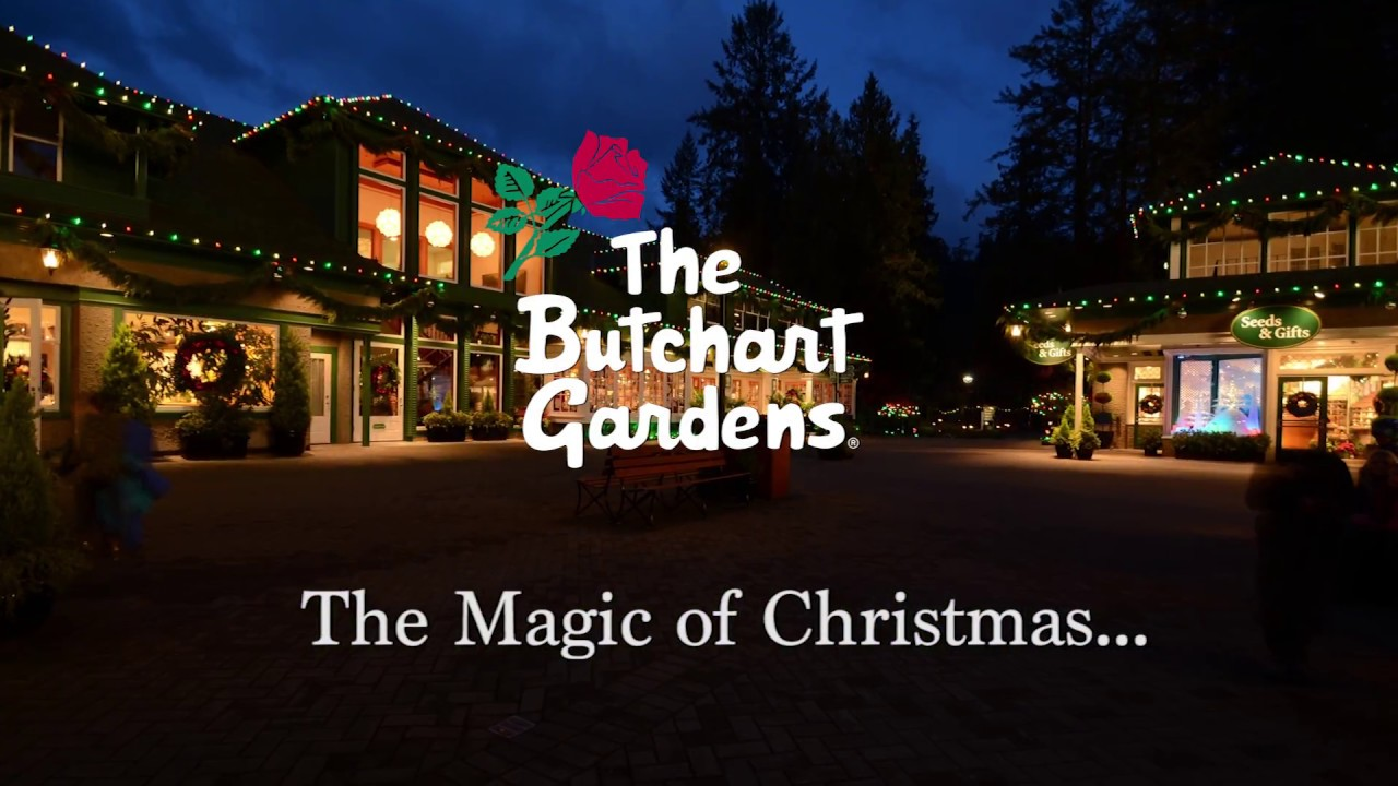 the butchart gardens magic of christmas youtube