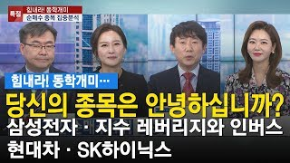 힘내라! 동학개미../ 당신의 종목은 안녕하십니까? 삼성전자·지수 레버리지와 인버스·현대차·SK하이닉스/한국경제TV