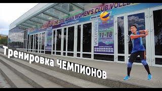 """Чемпионат Азии по волейболу - 2018 /ВК """"Алтай""""/ Тренировка Чемпионов"""