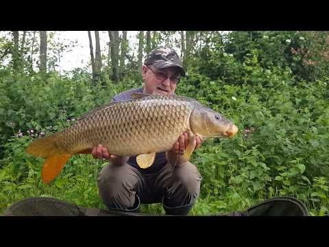 UK Carp & Coarse Fishing | Fishy Tales & Storys | Page 3