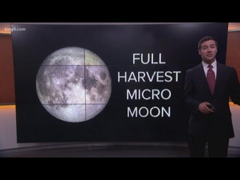 Friday 13th brings extremely rare 'micro' full moon