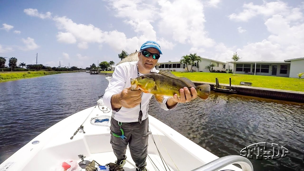 South florida lake ida fishing ultra light tackle for South florida fishing
