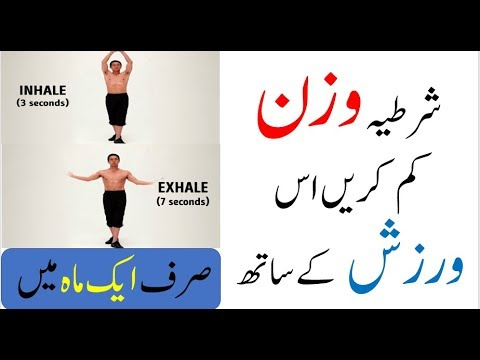 Exercise essay in urdu