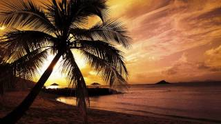 DJ Splash - Trip To Paradise [HD]