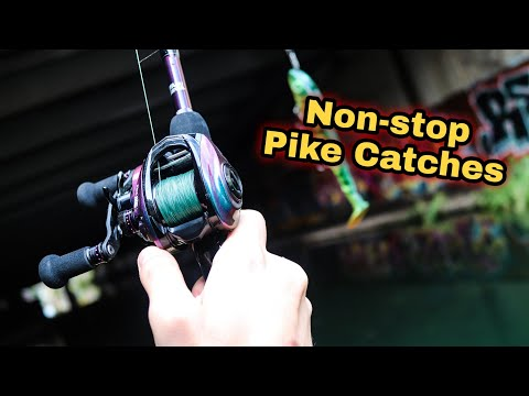 Non-stop PIKE Catches (Lockdown Special)