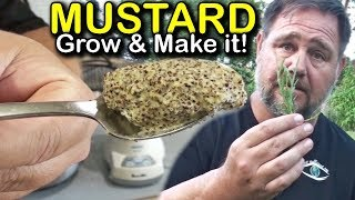 How to Make Homegrown Homemade Mustard