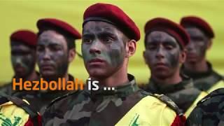 "Hezbollah's terrorism is ""cute"" terrorism!"