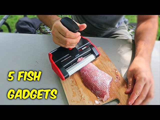 5 Fish Gadgets put to the Test