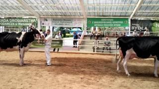 Wielkopolskie Targi Rolnicze - Sielinko 2017