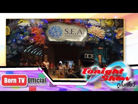ทูไนท์โชว์ 4 พ.ค. 58 (2/2) Amazing ต่างแดนสิงค์โปร ปิดท้ายเพลงจาก The Voice Thailand