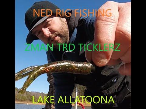 Having Fun Lake Allatoona Bass Fishing