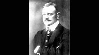 Sibelius Symphony No.1 in E Minor, Op. 39: II. Andante (Ma non troppo Lento)