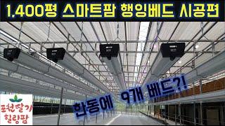 ICT스마트팜 행잉베드 시공 현장 / 수경재배 / 행잉…