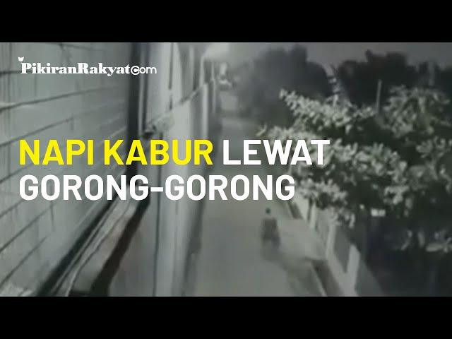 Detik-detik Narapidana Warga Negara Tiongkok Kabur Lewat Gorong-gorong