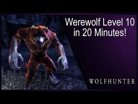 Level Werewolf in 20 Minutes from Lv 1-10! Werewolf Leveling Guide ESO Wolfhunter DLC