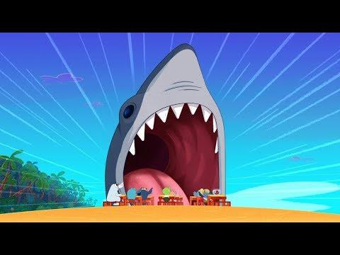 Zig & Sharko 🦈 REAL SHARK 🦈 The king of the sea 🌊 Cartoons for Children