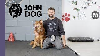 """Sztuczka """"a kuku"""" – TRENING – John Dog"""