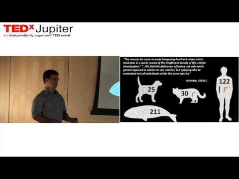 Aging and age related diseases: Dr. Pedro Reis Rodrigues at TEDxJupiter