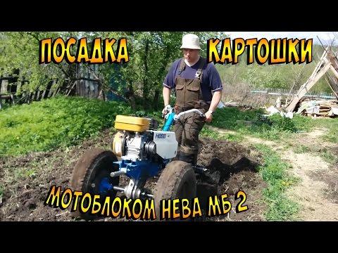 Посадка картошки мотоблоком НЕВА МБ 2 на москвичевских колесах