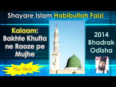 Habibullah Faizi